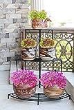 #9: NAYAB HANDICRAFTS Black Floral Design Metal Step Style 3 Tier Corner Shelf For Flower Pots, Planters Display Stand / Shoe Rack