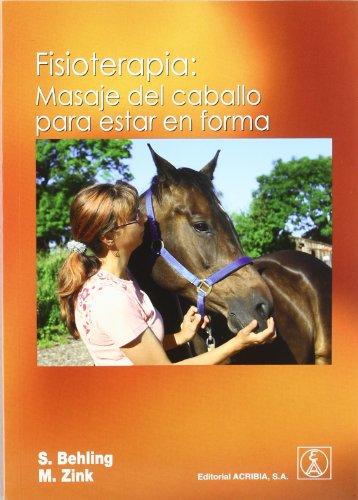 Fisioterapia: masaje del caballo para estar en forma
