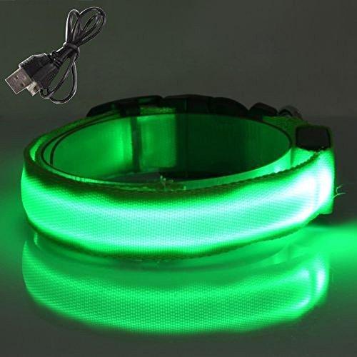 Sijueam Nylon USB Hundehalsband LED Halsband Leuchthalsband mit USB Kabel für Haustier Hunden Grün, L - 5