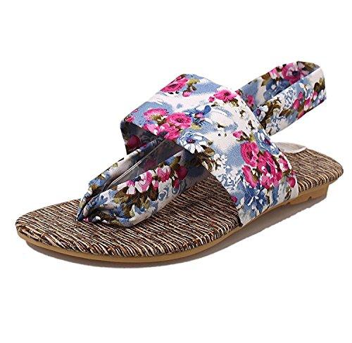 Malloom%C2%AE 40 EU , Blue : Malloom Women's Summer Sandals Shoes Peep-toe Low Shoes Roman Sandals Ladies Flip Flops