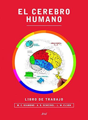 El cerebro humano. Libro de trabajo (Ariel) por Marian C. Diamond