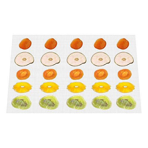 Kwasyo Tappetino da Forno Antiaderente in Silicone, per Essiccatore Alimenti, Set di 10, 38 * 28cm, Riutilizzabile, Lavastoviglie Stuoie sicura, Essiccatore per Frutta e Verdura BPA-Free