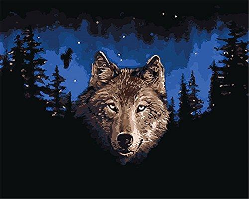 CaptainCrafts Neu Malen nach Zahlen 16x20' für Erwachsene, Kinder Leinwand - Tier Nacht Wolf (Ohne...