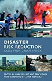 Image de Disaster Risk Reduction: Cases from Urban Africa