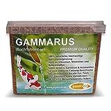 pondovit Gammarus (Bachflohkrebse - Premiumsnack - Koi Leckerbissen, 2.4 l