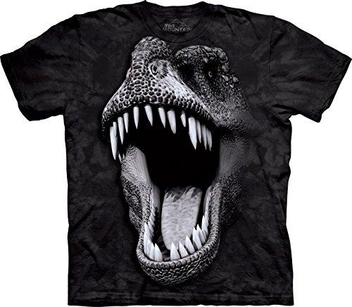 The Mountain Kinder Big Face Glow Rex Kids Tee T-Shirt, Schwarz, M