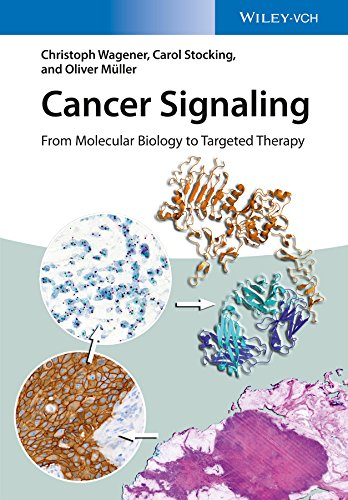 Cancer Signaling, Enhanced Edition: From Molecular Biology to Targeted Therapy (English Edition)