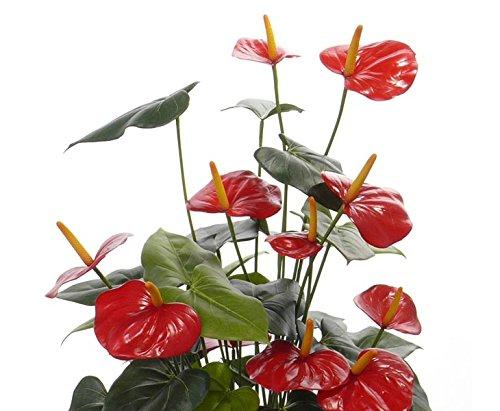 Flamingo Kunstblume mit 13 roten Blüten, 80cm – Kunstpflanze künstliche Blumen Kunstblumen Blumensträuße künstlich, Seidenblumen oder Blumen aus Plastik Kunststoff