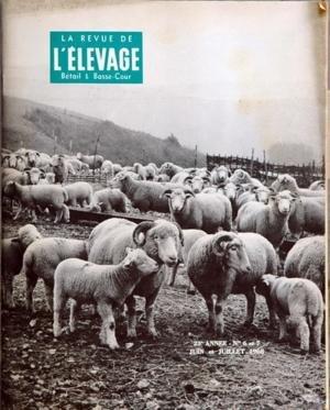 REVUE DE L'ELEVAGE (LA) du 01-06-1968 BETAIL ET BASSE-COUR LES COMMENTAIRES DE TIQUET-REMONT CHRONIQUE DE ROUY LES SALAIRES AGRICOLES LEVEAU DE CHALAIS PAR MARDIKIAN ASPECTS DE L'ELEVAGE BOVIN AUX ETATS-UNIS EN GRANDE-BRETAGNE - ENGRAISSEMENT INTENSIF LA TRAITE MECANIQUE EN NOUVELLE-ZELANDE LA DESHYDRATATION DES FOURRAGES PAR SPINDLER LE PRIX DES HERBAGES SOUCHE ET HYGIENE EN PRODUCTION PORCINE PAR TARDIF DEVELOPPER L'ELEVAGE OVIN DANS LES COTES-DU-NORD PAR MEROT - LE POMMELEC ET PREVO...