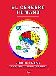 El cerebro humano. Libro de trabajo (Ariel)