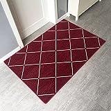Q&F Große Fußabtreter Fußabtreter Außenbereich Eingangsmatte Schmutzfangmatte Eingang Teppich Für Küche,Home-D 60x90cm(24x35inch)