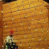 Salcar Rete di Luci 204 LEDs Tenda di Luci per Natale, 3m x 2m Rete luminosa da giardino + 3m Cavo di alimentazione, Catene luminose per esterni Esterni Casa, Balcone, Salotto, Giardino,Terrazza