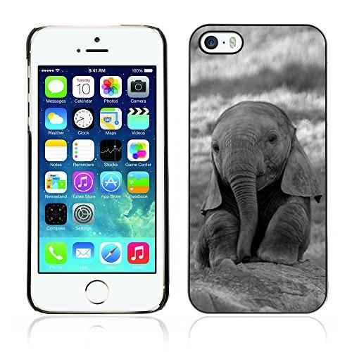 Graphic4You Elefant Tier Drawing Painting Design Harte Hülle Case Tasche Schutzhülle für Apple iPhone 5 und 5S Design #3