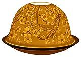 Himmlische Düfte Geschenkartikel DL0070 Frühlingsboten Windlicht Porzellan 12 x 12 x 8 cm, weiß