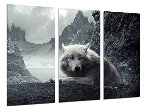 Cuadro Moderno Fotografico Animales Salvajes, Lobo Blanco Montaña, 97 x 62 cm Ref. 26428