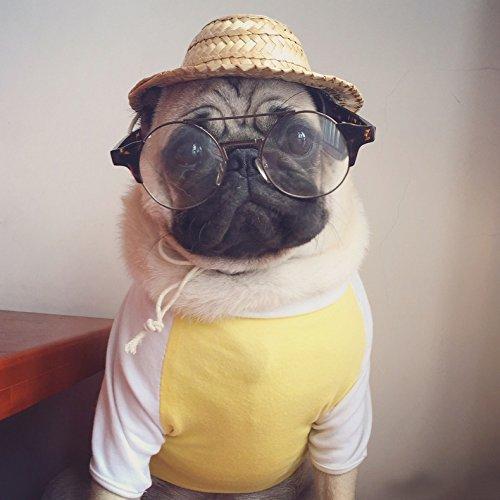 Haustier Hüte Forepin® Katze Hunde Kätzchen Gurt Hut Kappe Hat Sunbonnet Hat Strohhut Hundecap für Klein Mittel Hunde und Kätzchen
