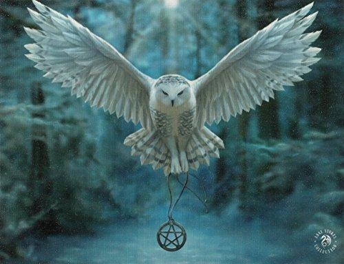 Stampa su tela, motivo: Awake Your Magic, design di Anne Stokes