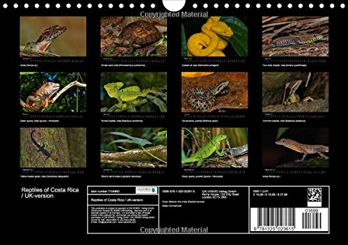 Reptiles of Costa Rica / UK-Version: Snakes, Lizards and Turtles of Costa Rica (Calvendo Animals)