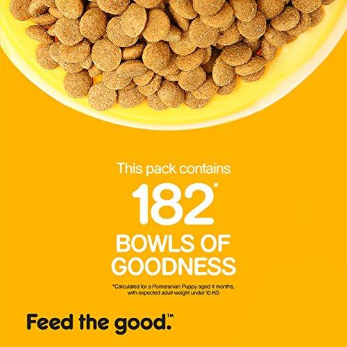 Pedigree Puppy Dog Food Meat Milk 20 Kg Pack Clickonway