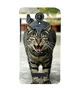 growling Cat 3D Hard Polycarbonate Designer Back Case Cover for Micromax Canvas Spark Q380