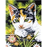 Ranger Junior Paint by Number Kit, 9 by 12-Inch, Kitten by Reeves