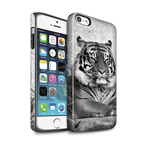 STUFF4 Matte Harten Stoßfest Hülle / Case für Apple iPhone SE / Wolf Muster / Zoo-Tiere Kollektion Tiger