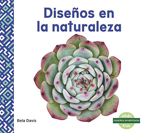 Disenos en la naturaleza (Patterns in Nature) (Idisenos Divertidos!) por Bela Davis