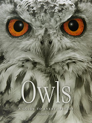 Owls: A guide to every species por Marianne Taylor