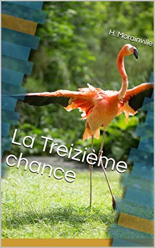 Couverture du livre La Treizième chance