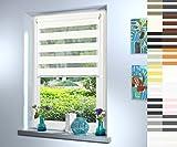 Doppelrollo nach Maß, hochqualitative Wertarbeit, alle Größen und 18 Farben verfügbar, inkl. Seitenführung, Rollo nach Maß, Duo Rollo, für Fenster und Türen, Klemmfix ohne Bohren (100cm Höhe x 30cm Breite / Weiß)