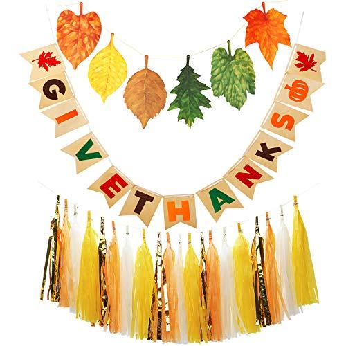 Thanksgiving Partydekoration B