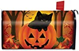 Best Briarwood Lane Garden Decors - Halloween Kitten Magnetic Mailbox Cover Jack o'Lantern Holiday Review