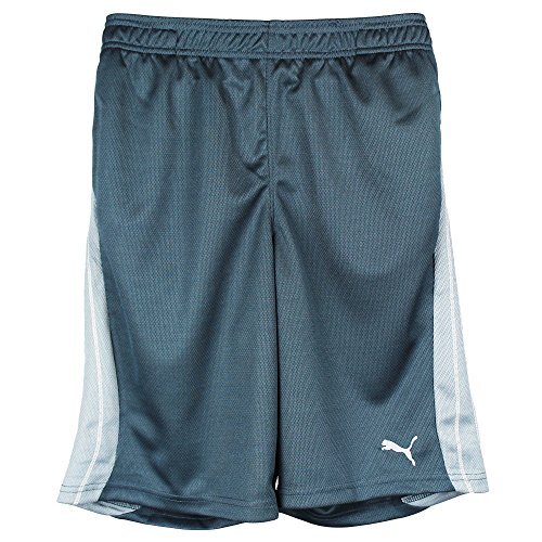 PUMA Big Boys' Form Stripe Short, Charcoal, Small -