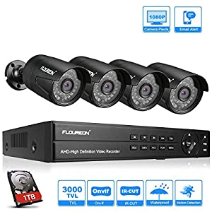 kit videovigilancia: FLOUREON DVR Video Kit de vigilancia (8CH 1080N AHD DVR + 4 *1080P 3000TVL 2.0MP...