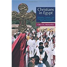 Christians in Egypt: Orthodox, Catholic, and Protestant Communities - Past and Present: Orthodox, Catholic and Protestant Communties Past and Present