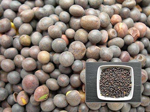 Vesce d'Hiver Minnie (1) - 7 sachets de 1 gramme - Vicia Sativa L. - Winter Vesce - (Engrais Vert - Green Manure) - SEM02