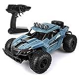 LBLA RC Ferngesteuertes Auto, 2,4 GHz Racing Buggy Auto Offroad Elektro High Speed Monster Truck, 20km/h RTR Schnelle Auto,Radio gesteuertes Auto für Erwachsene und Kinder(Blau)