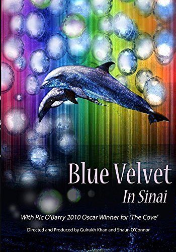 Preisvergleich Produktbild Blue Velvet in Sinai Ep. 3 - Conflicting Interests[NON-US FORMAT,  PAL]