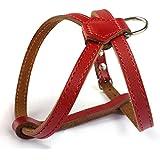 Echtleder Hundegeschirr klassische für kleine Hunde Welpen Anti Zug Brustumfang: 28-36cm Einstellbar Rot
