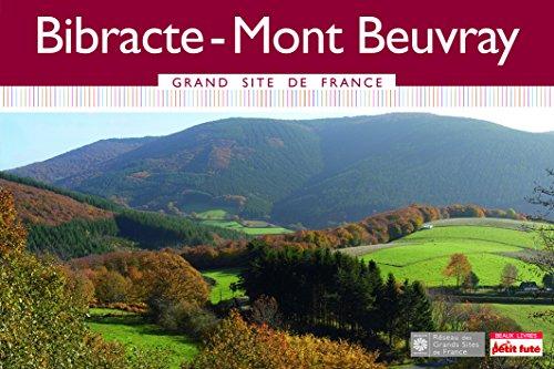 Bibracte-Mont Beuvray par Delphine Tabary