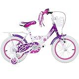 14 Zoll Hi5Emily Kinderfahrrad mit Rücktritt Stützräder und Gepäckträger Pink Weiss Lila, Farbe:Weiß / Purple