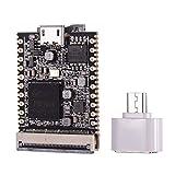 Aibecy Lichee Pi NanoF (16M) Cross-Border-Core-Board ARM 926EJS 32 MB DDR-Entwicklungsboard Mini-PC