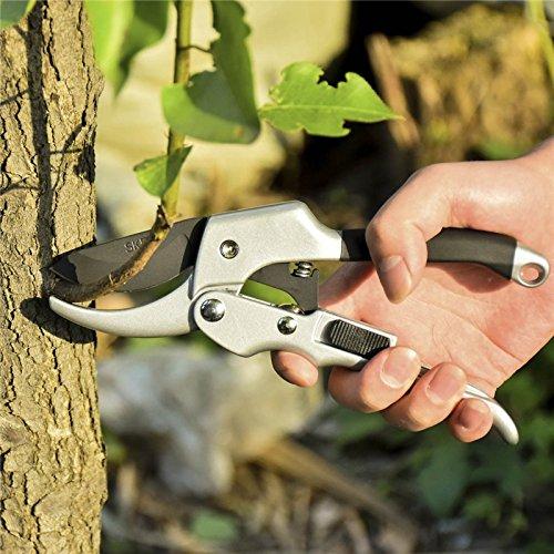 Coupe-branche-professionnel-en-acier-Scateur–cliquet-lagage-Ciseaux-de-jardin-Bonsai-Arbuste-Orchard-Fruits-Arbre-Branche-Cisaille–haies-Outils-de-coupe