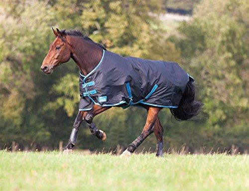 Shires Tempest Original 100Outdoor-Pferdedecke, mit Futter 100g schwarz/blau, multicolore - Noir/Vert