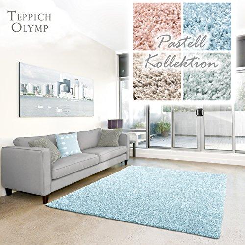 Shaggy-Teppich Pastell | Flauschige Hochflor Teppiche fürs Wohnzimmer, Esszimmer, Schlafzimmer oder Kinderzimmer | Einfarbig, Schadstoffgeprüft (Aqua - 60 x 90 cm)