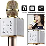 RFV1 Q7 Bluetooth Wireless Karaoke Mike For With All Smart Phones (Gold)
