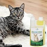 Geruchsneutralisierer Spray für Katzen – natürlicher Katzenurin Entferner – gegen Katzenklo Geruch (500ml Konzentrat ergeben 25 Liter gebrauchsfertigen Katzenurin Geruchsentferner) - 9