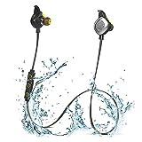 boAt Rockerz 250 In-Ear Bluetooth Headphones with Mic