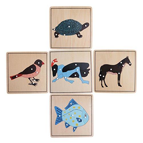 MagiDeal Rompecabezas de Animal Montessori Material de Zoología