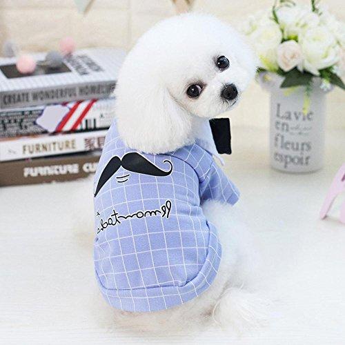 Sommer, Baumwolle, Bart-Hemd, kurzärmelig Welpen Haustier Hund Kleidung (Hund Bart Kostüm)